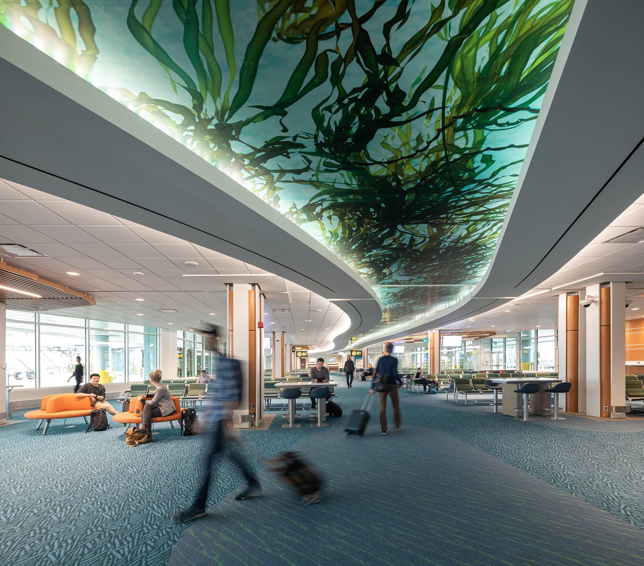 bbp yvr pier d ceiling feature